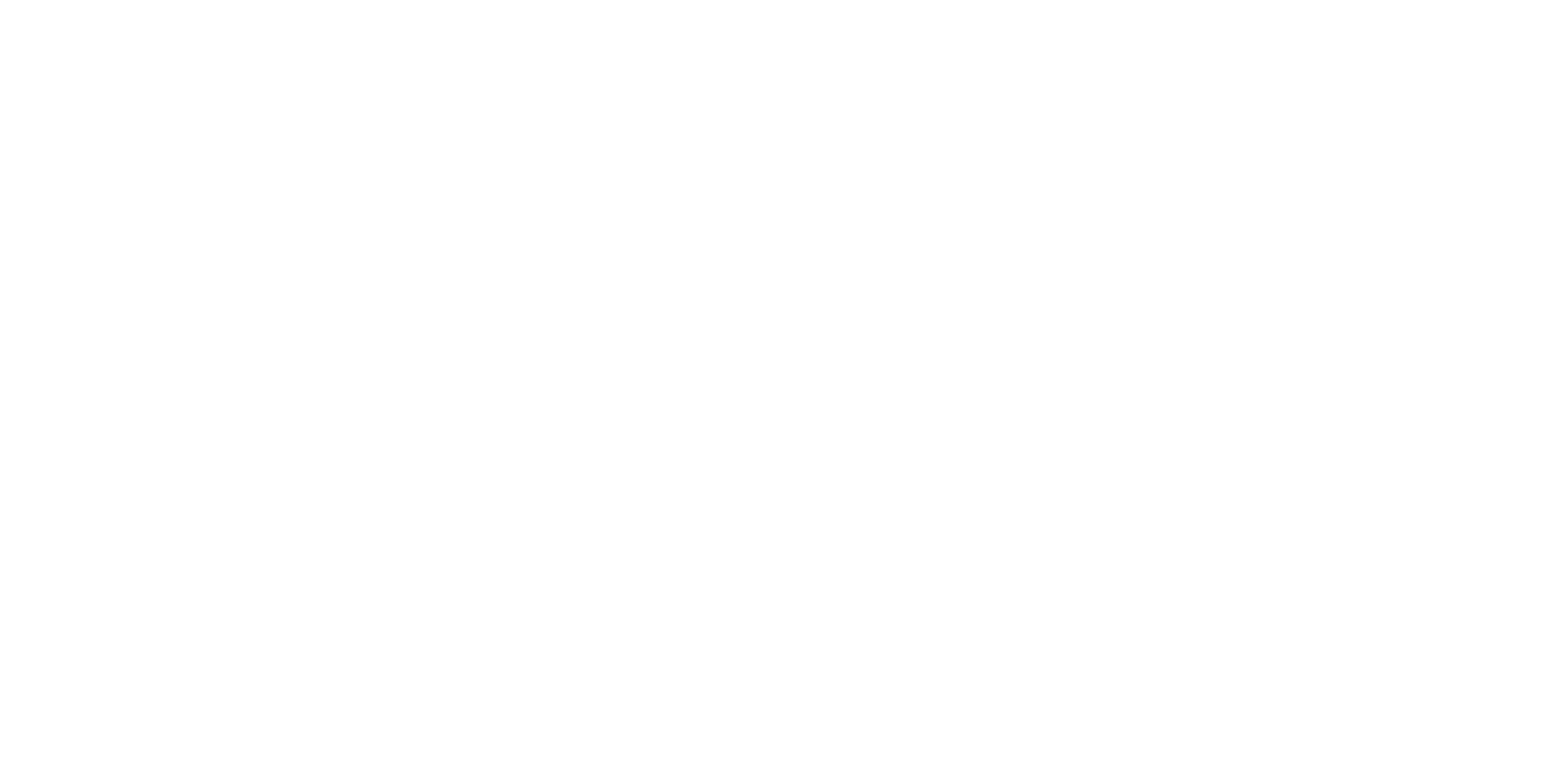 Solidarietà Insieme 2010